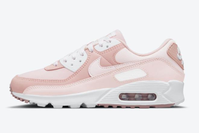 2021 Cheap Nike Air Max 90 Pink Oxford DJ3862-600